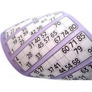 Supa Bingo Flyers (Sleeve)